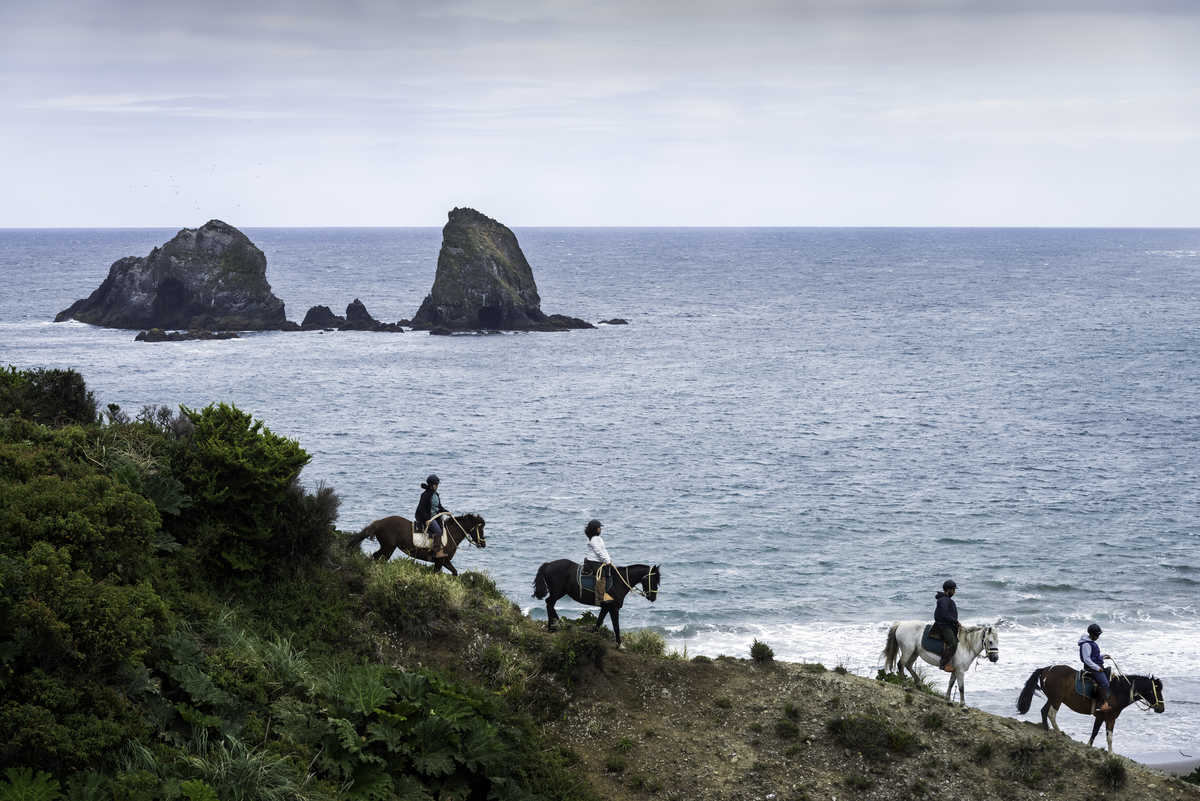 CKH 2649 marimari horseriding