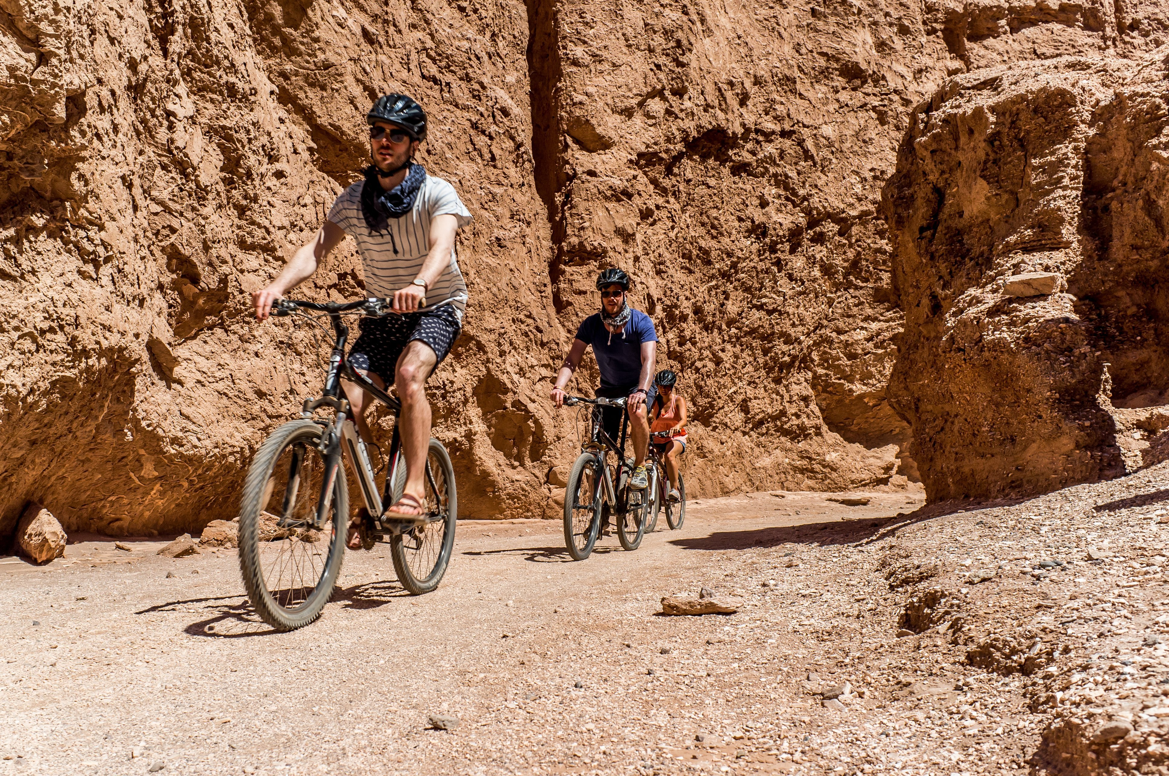 NOI Casa Atacama Excursions Biking