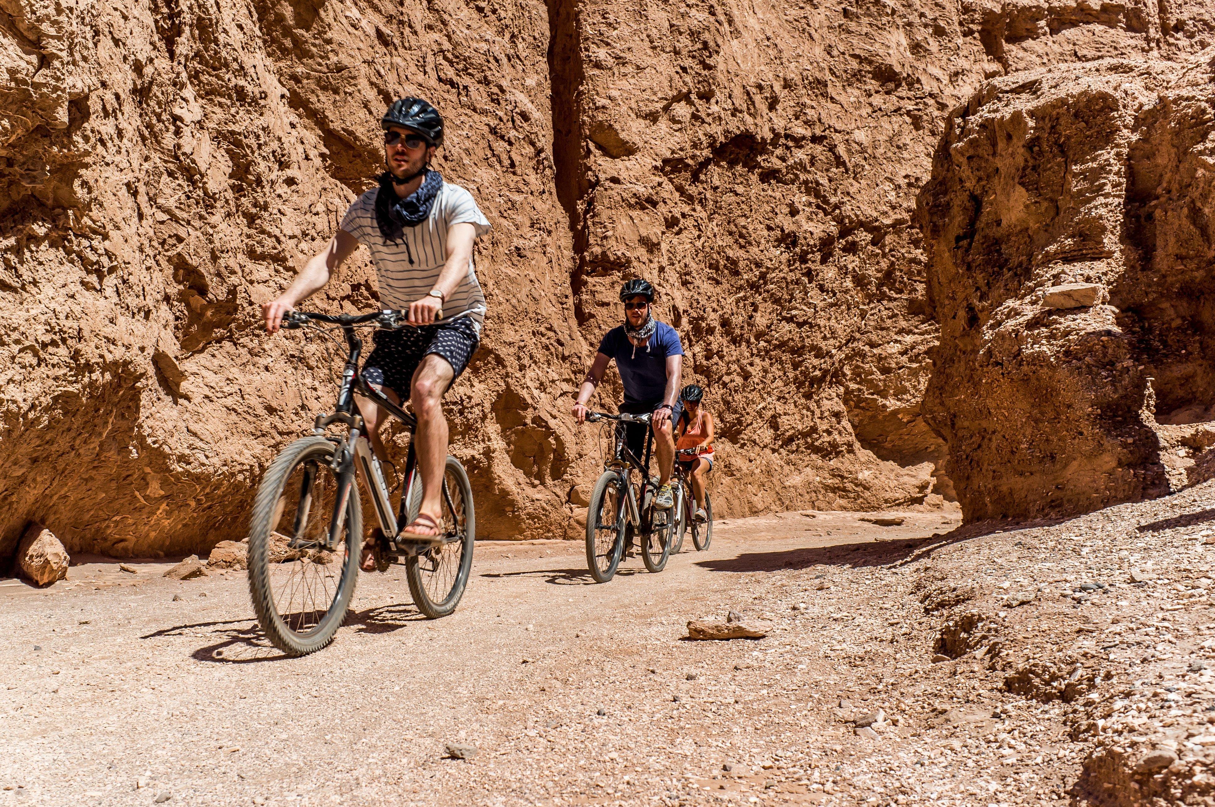 NOI Casa Atacama Excursions Biking