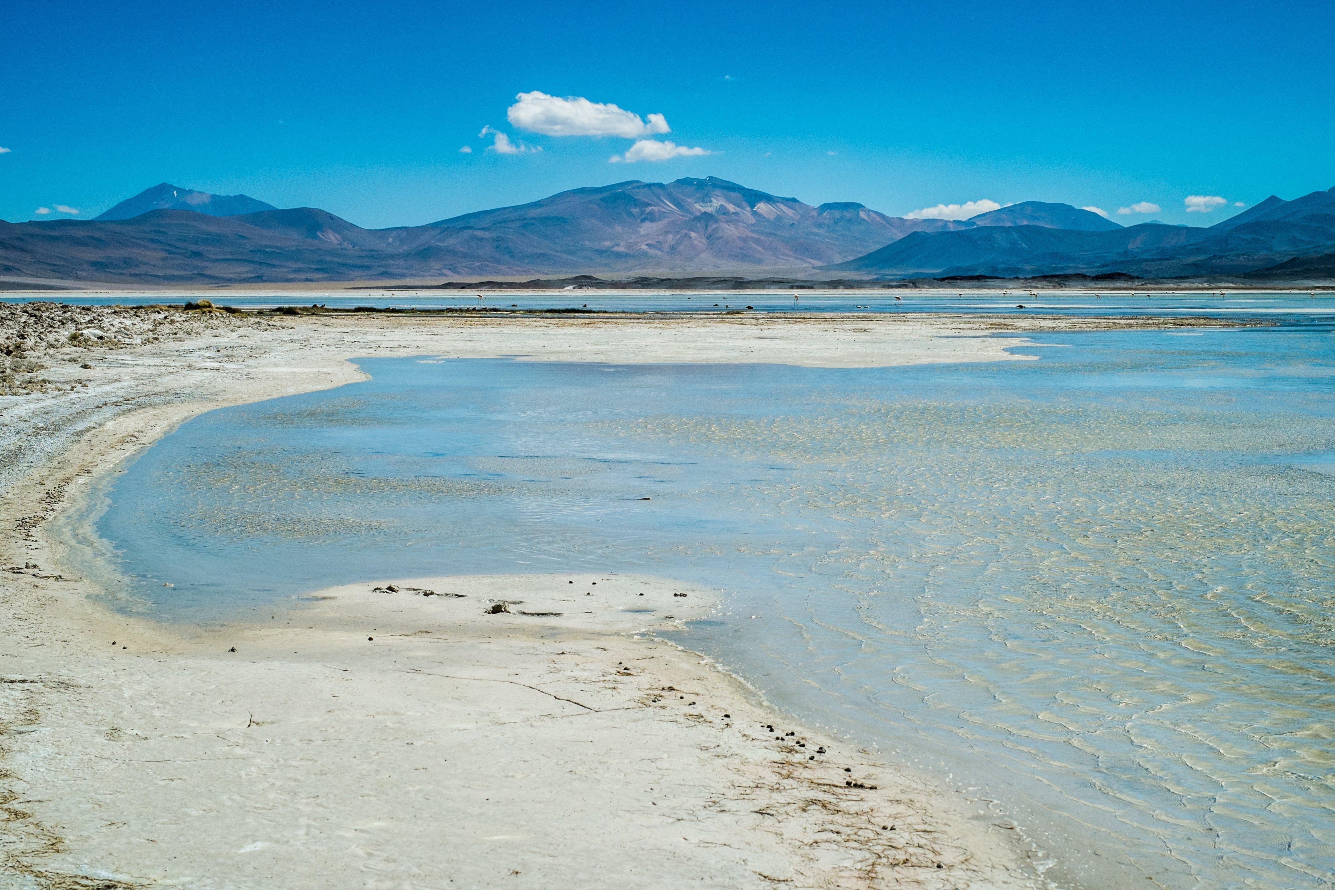 NOI Casa Atacama Excursions Lagunas Altiplanicas 2