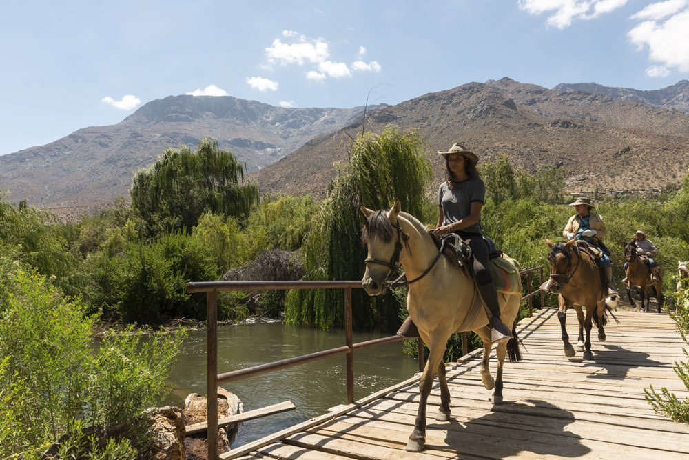 Elqui Valley - Chile