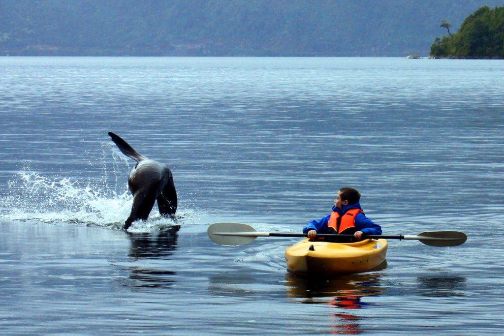 niño kayak 1