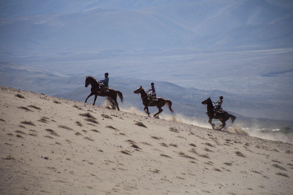 horseback ride 3
